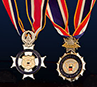 Congressional Badge of Bravery image